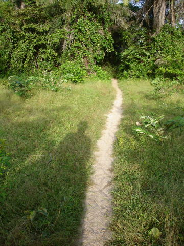 chemin-vers-hillol-bis.1195813278.jpg