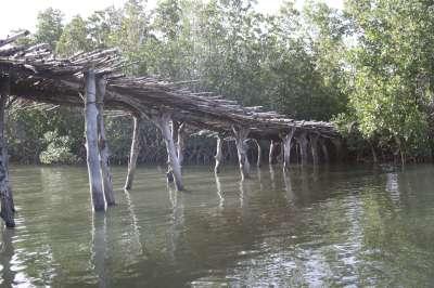 petit-pont-2-400.1202820822.jpg